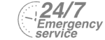 24/7 Emergency Service Pest Control in Hampstead, NW3 . Call Now! 020 8166 9746